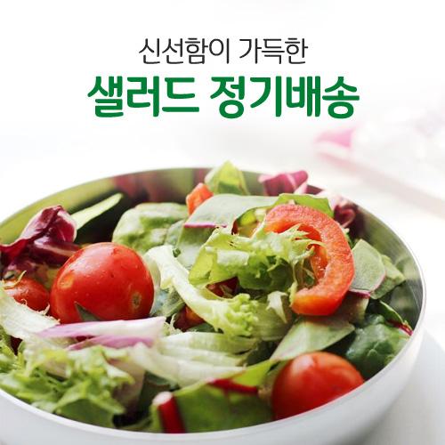 샐러드 정기배송